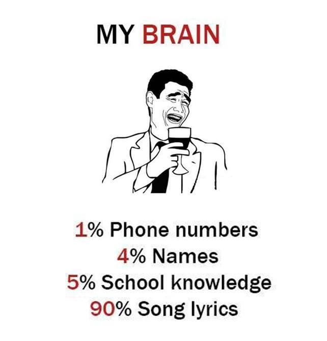 My Brain...
