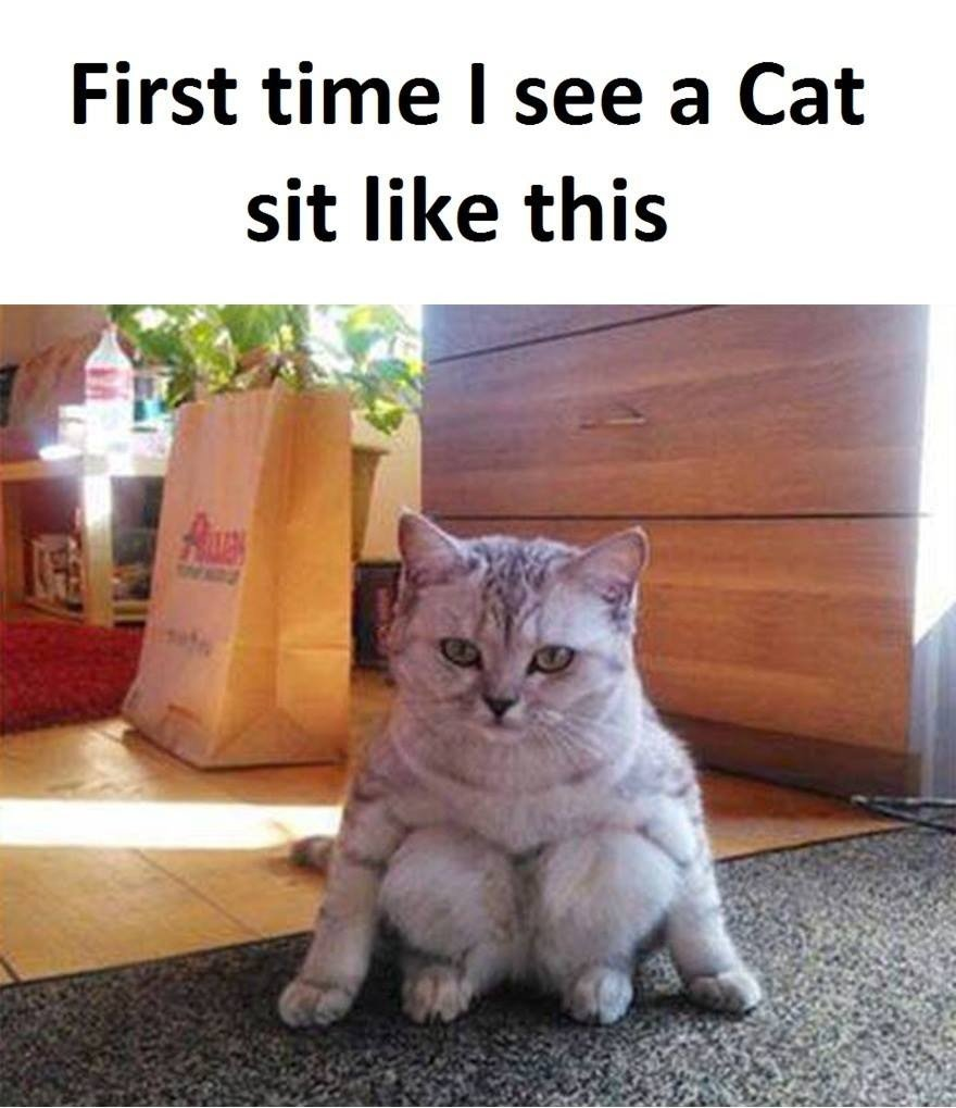First Time I...