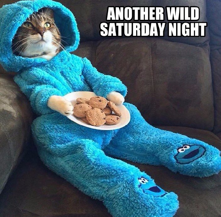 Another Wild Saturday...