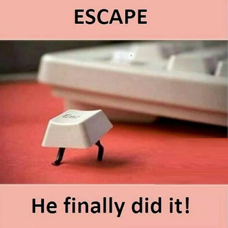 He Finally Did...