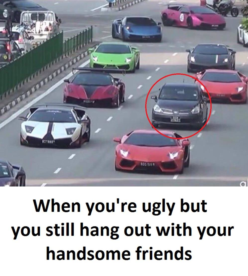 When You're Ugly...