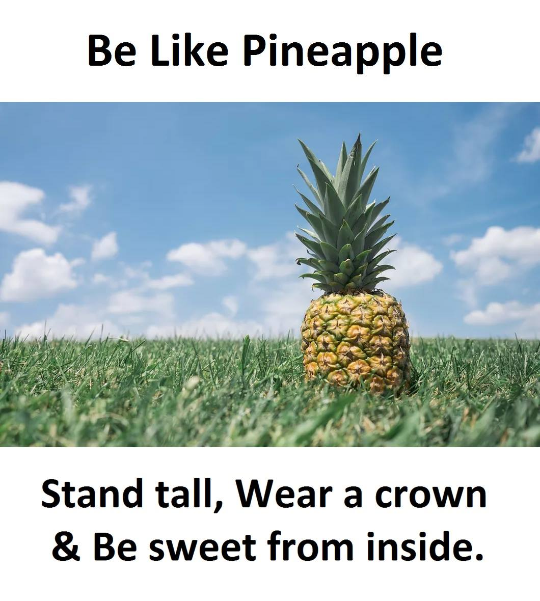 Be Like Pineapple...