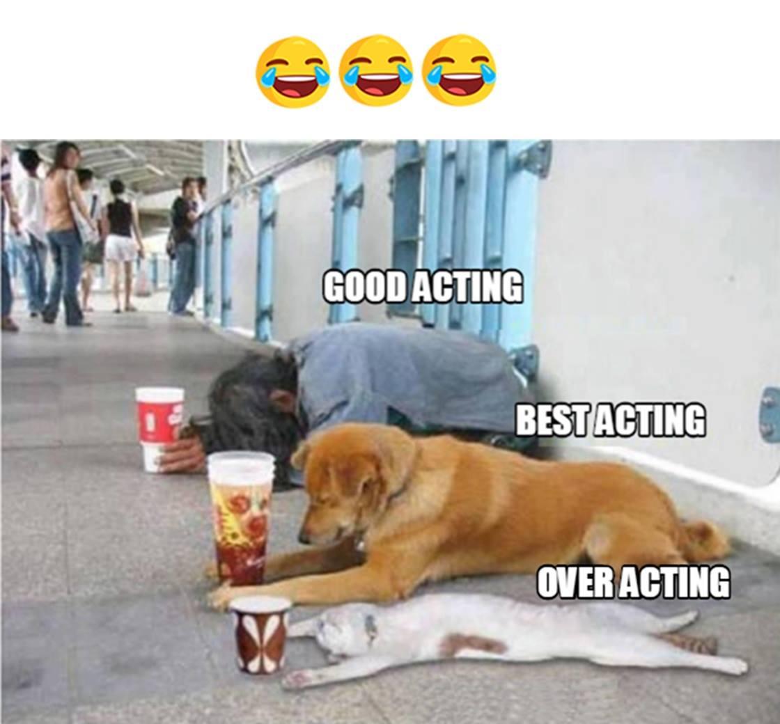Good Acting...