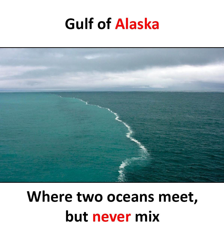 Gulf Of Alaska...
