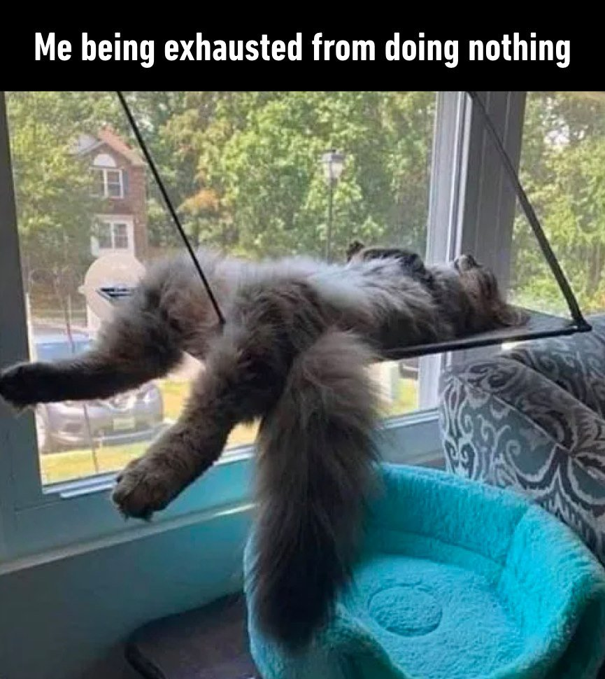 Me Being Exhausted...