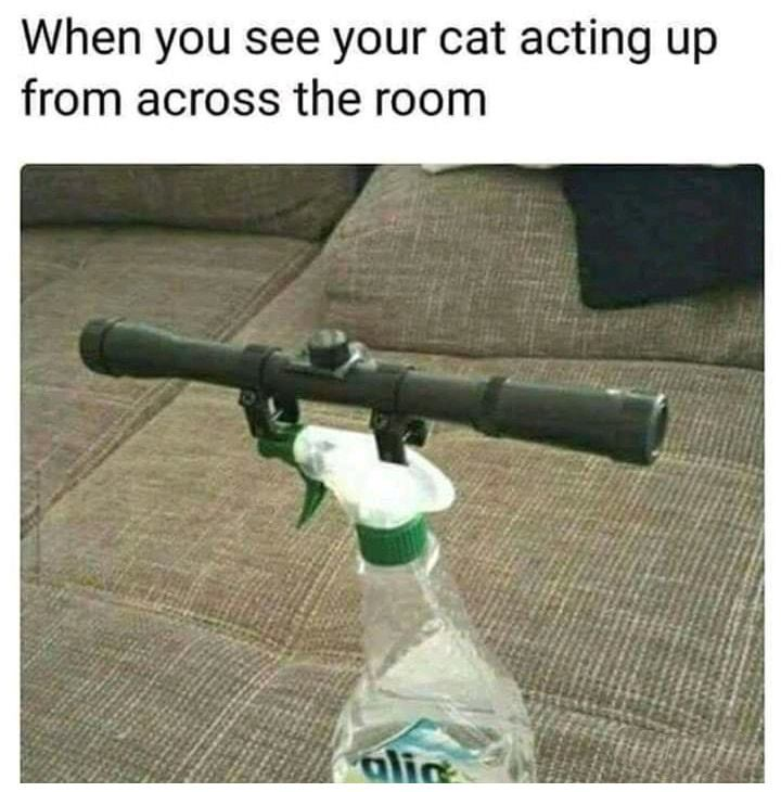 When You See...