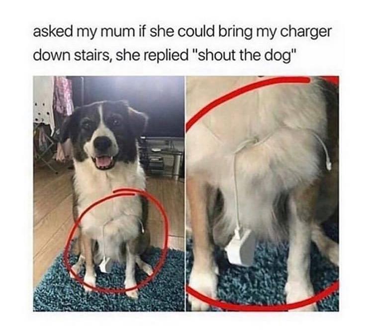 Asked My Mum...