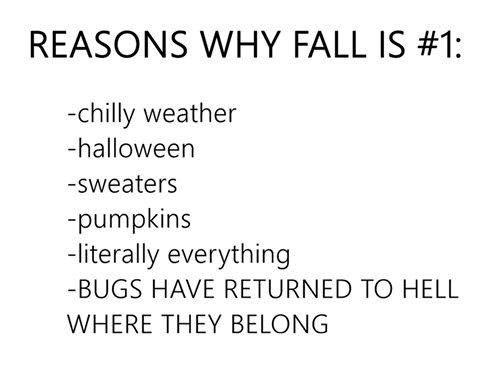Reasons Why Fall...