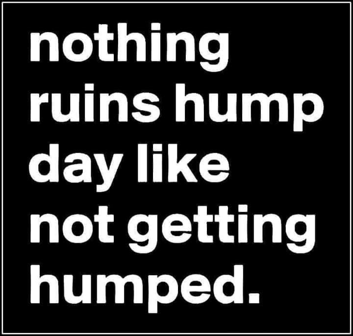 Nothing Ruins Hump...
